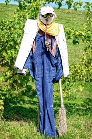 scarecrow-939491_960_720