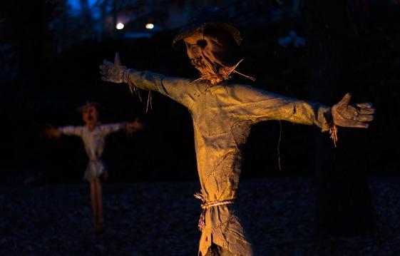 halloween-1960485_960_720